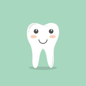 Dr Yann Guez donne quelques rappels sur les dents