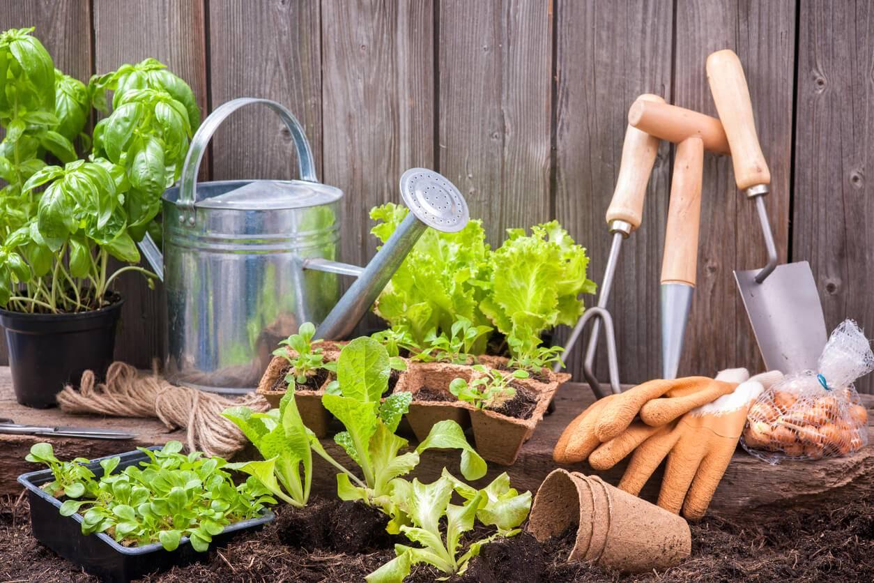 Comment bien d corer et quiper son jardin genie edition - Comment decorer son jardin ...